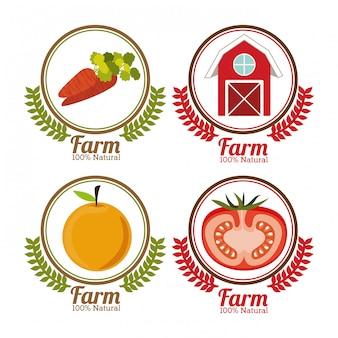 Дизайн фермы