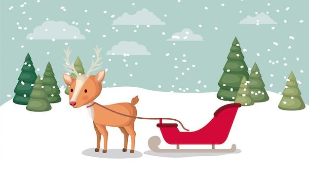 雪景色の鹿で鹿