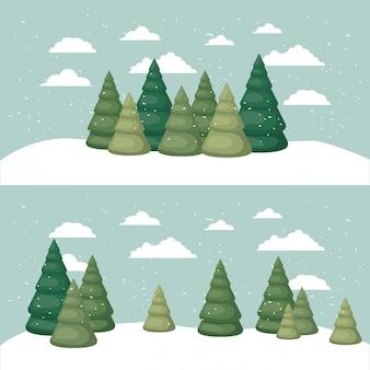 松林の雪景色の雪景色