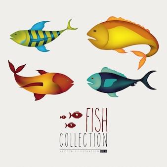 魚のデザイン
