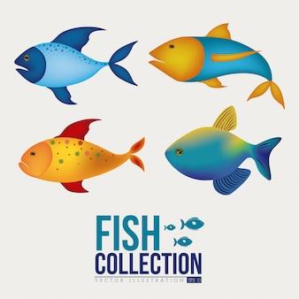 Дизайн рыбы