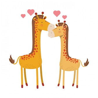 Милая пара жирафов с сердечками