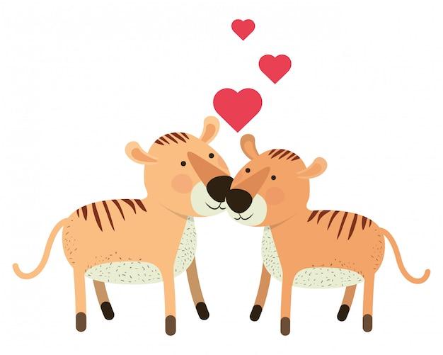 Милая пара тигров с сердечками
