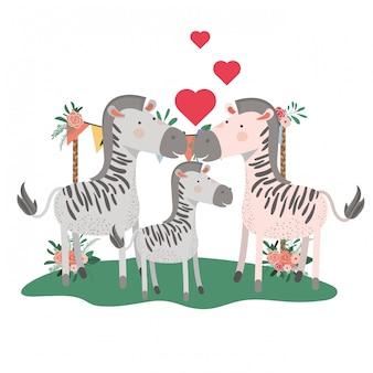 Милые семейные зебры с сердечками