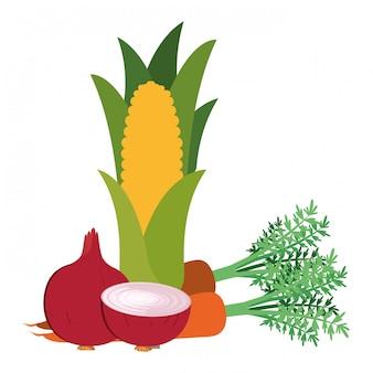 Красивые свежие овощи изолированные значок
