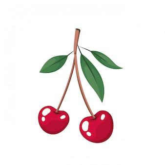 Вишневый плод изолированные значок