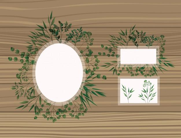 月桂樹とフレームのセット葉の木製の背景