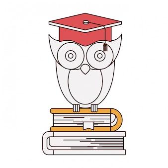 書籍のスタックのキャップ卒業とフクロウの知識のシルエットカラーセクション