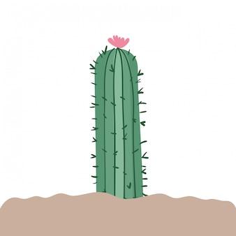 Кактус в ландшафте изолированы