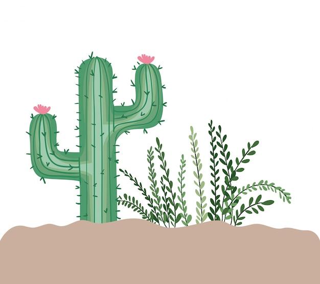 分離された風景の中の植物