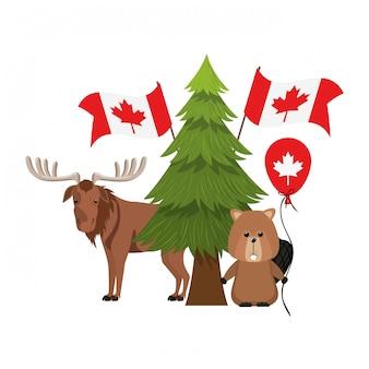 カナダのビーバーとムース動物