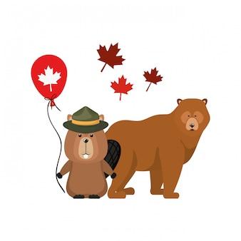 カナダのビーバーとクマ動物