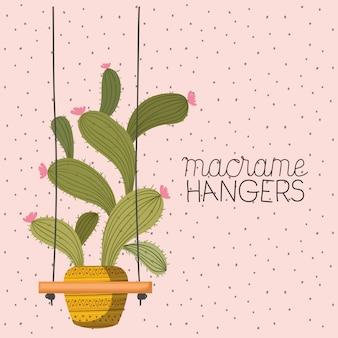 マクラメハンガーの観葉植物