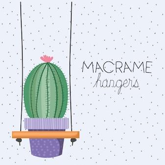 マクラメハンガーのサボテン観葉植物