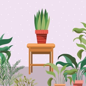 木製の椅子の庭の景色の観葉植物