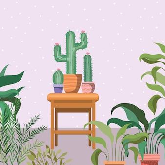 木製の椅子の庭のシーンでサボテン観葉植物