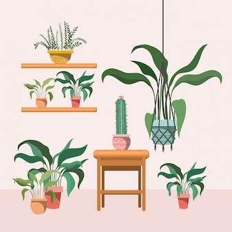 マクラメハンガーと木製の椅子の観葉植物