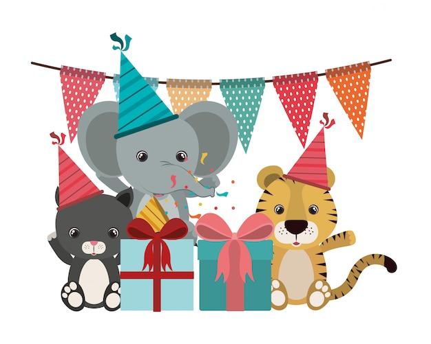 動物との誕生日のお祝いのカード