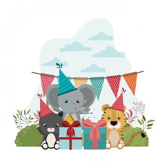 動物とのお祝いのカード