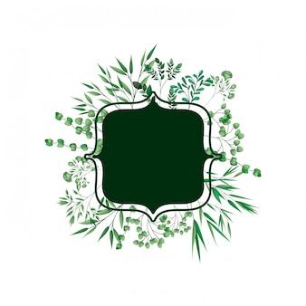 Зеленая рамка с ветвями и листьями