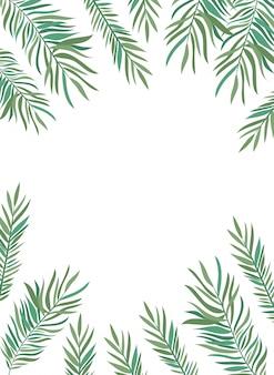 白い背景の夏の葉と枝のフレーム