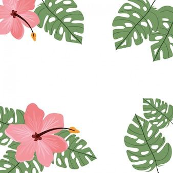 花と背景と夏の葉