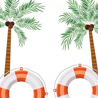 白い背景のココナッツとヤシの木