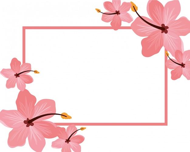 花とフレームと白い背景の葉