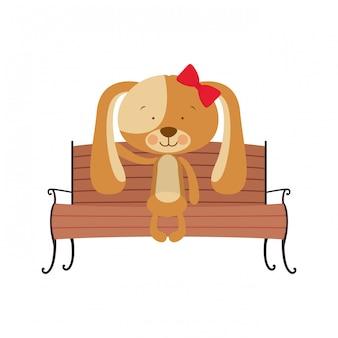 公園の椅子に座っているかわいい犬