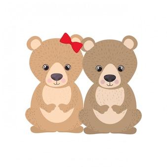 クマのかわいいカップル