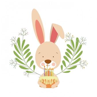手にケーキとかわいいウサギ