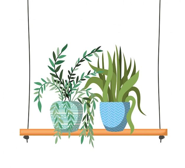 棚に鉢植えの観葉植物