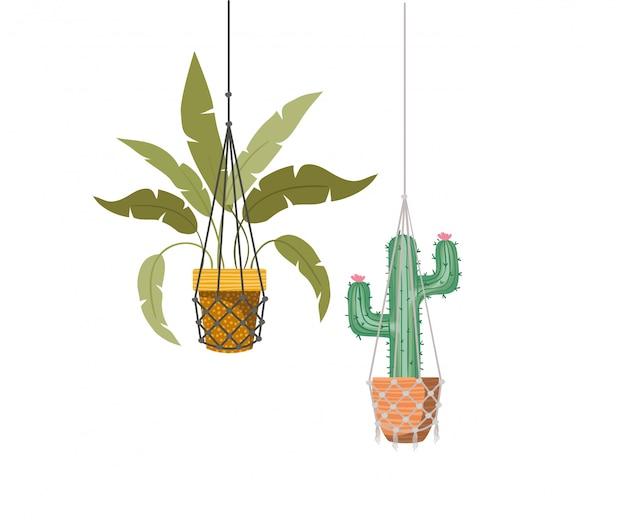 Комнатные растения на макраме вешалки значок