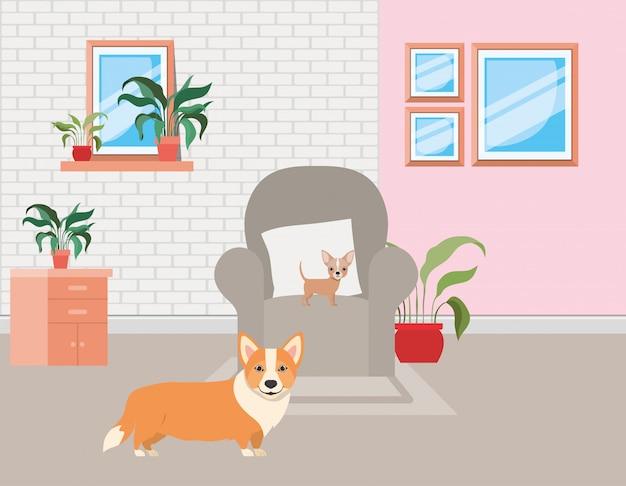 リビングルームでかわいい犬