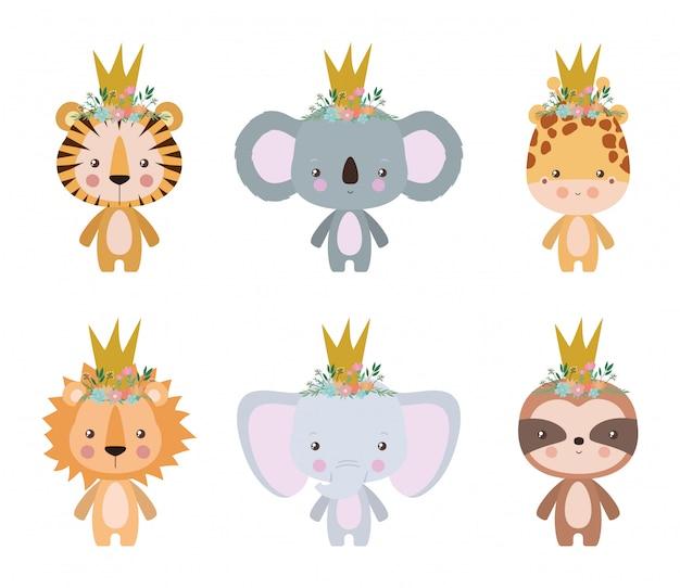 Милый тигр коала жираф лев слон и лени мультфильм дизайн, животное зоопарк жизнь природа характер детство и очаровательны тема векторная иллюстрация