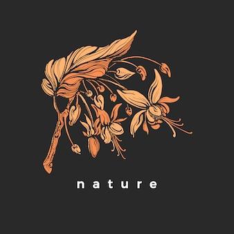 葉と花が咲くココアの木。植物の黄金の形、自然のシルエット。現実的なヴィンテージの花のシンボル。黒の背景に分離された手描きのアンティークイラスト