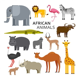 アフリカや動物園の動物。かわいい漫画のキャラクター。図。