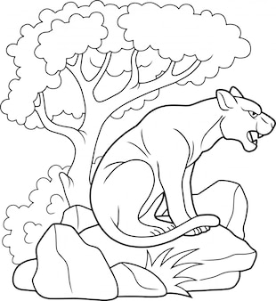 野生のクーガー