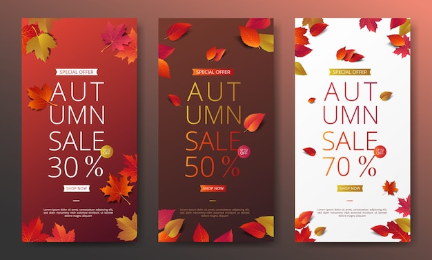 Осенний шаблон баннера