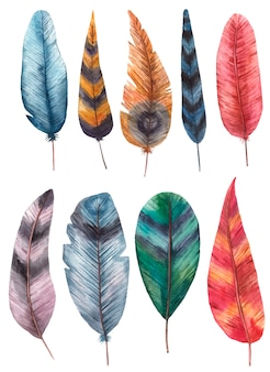 Набор цветных перьев акварели на белом фоне