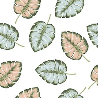 熱帯のシームレスなパターンの白い背景。エキゾチックなジャングルの壁紙。花のピンクとブルーのモンステラの葉。