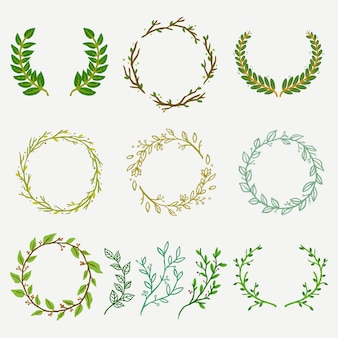 自然の枝と葉のフローリストロゴセット