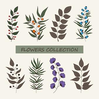 Векторный набор элементов ботаника с кругами разного цвета