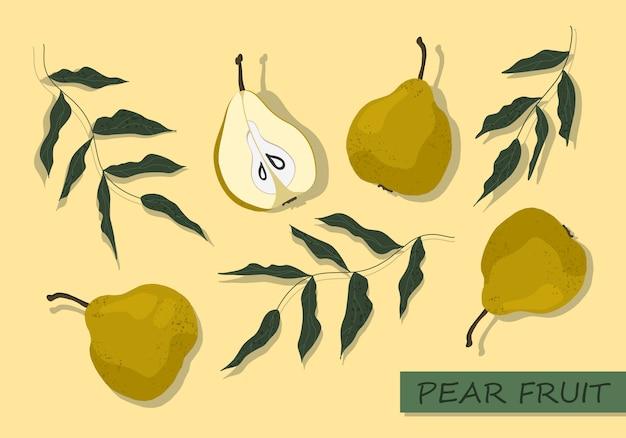 ベクトル梨セット。孤立した手描き梨フルーツと木の枝のコレクション