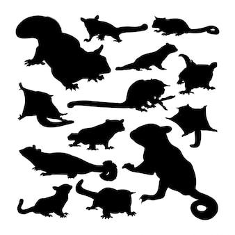 シュガーグライダー動物のシルエット。