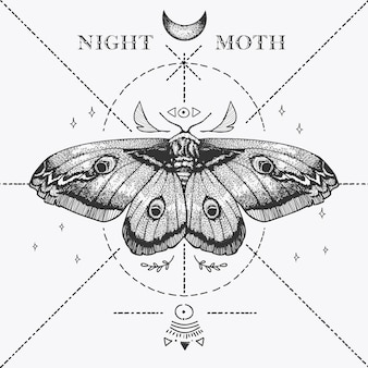魔法の夜の蛾のスケッチ