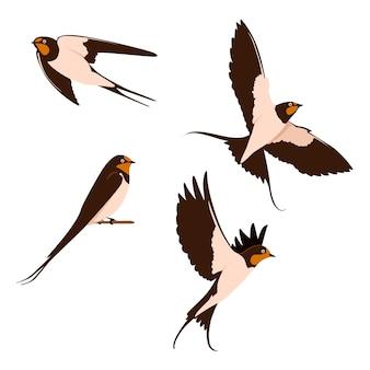 ツバメのイラストのセット。鳥の動物
