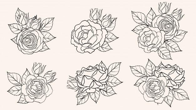 手描きでバラ飾りベクトル