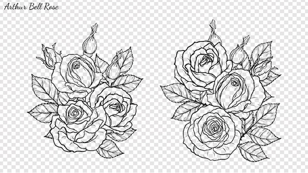 手描きでバラ飾りベクトル。