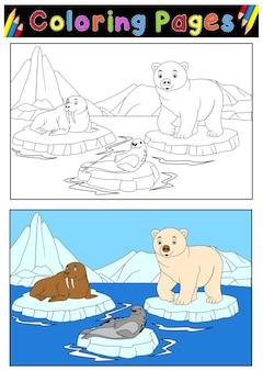 ブックを着色するための北極動物